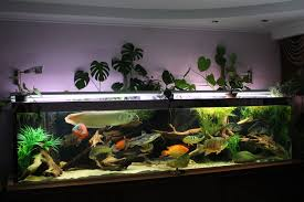 Mario Brothers Aquarium Decorations I Like The Way The Plants Grow Out Of The Top Herebut I Bet