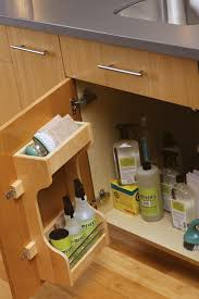 under the sink cabinet storage for cleaning supplies from dura supreme cabinetry featuring a cabinet door