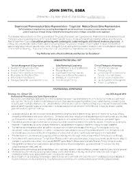 Example Of A Summary For A Resume Delectable Examples Of A Professional Resume Mmventuresco