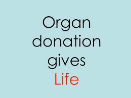 organ donation persuasive essay article how to write better essays organ donation persuasive essay
