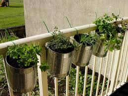 outdoor herb garden. Outdoor Herb Garden I