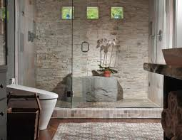 shower : Porcelain Bathtub Options Beautiful Shower Tub Enclosures ...