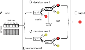 Classification And Interaction In Random Forests Pnas