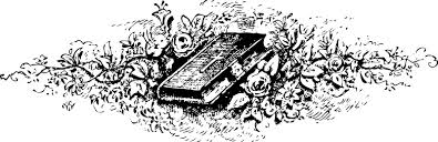 Small Picture Roses Coloring Pages 2 Coloring Pages To Print