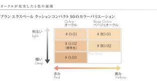 Lancome Concealer Color Chart