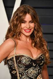 Sofia Vergara Breast Surgery