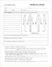 Paper Medical Chart Template Medical Chart Templates Jasonkellyphoto Co