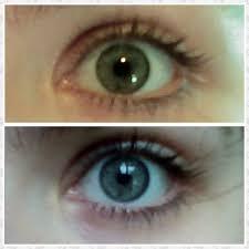 Youreyecolour Green Eye Colour A Rare Human Eye Colour