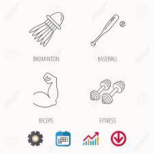 Baseball Chart Fitness Sport Biceps And Baseball Icons Badminton Linear Sign