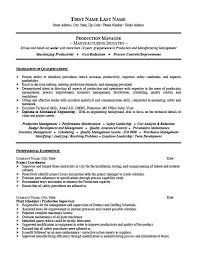 Example Job Resume Project Manager Resume Template Premium Resume ...