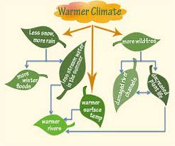 Flow Chart Of Causes Of Global Warming Science For Kids Climate Change Rocky Mountain Research