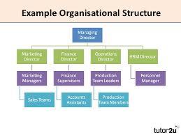 Hierarchy Hr Department Human Resource Management Commerce