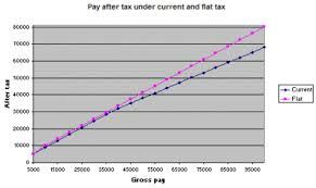 Flat Tax Chart Flat Tax System Coursework Sample Sressaywphd Chamavillage