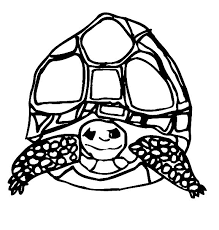 Small Picture Coloring Page Tortoise animal coloring pages 13