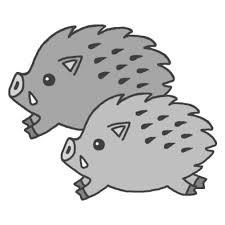 亥イノシシのイラストbモノクロ2007年亥年平成19年猪いのししと