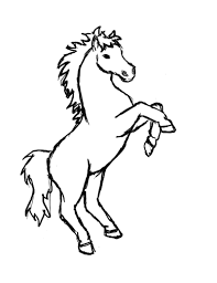 rearing horse drawing step by step. Wonderful Drawing Rearing Horse Art Inside Drawing Step By