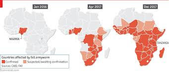An Army Of Worms Is Invading Africa Daily Chart
