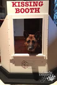 office pet ideas. A Kissing Booth For Dogs Both Small And Large. Fund Raising Idea Sheltered Animals Office Pet Ideas R