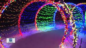 Wps Garden Of Lights Wps Garden Of Lights At The Botanical Gardens One News