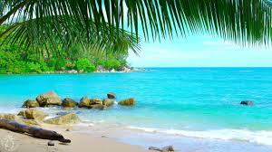 Beach Tropical Island Beach Ambience Sound 8 Hours Ocean Sounds For