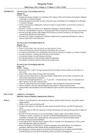 Team Lead Customer Service Resume Samples Velvet Jobs