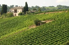 Wine Enthusiast 2018 Vintage Chart The 2013 Brunello Vintage Showcases Stunning Radiant Wines