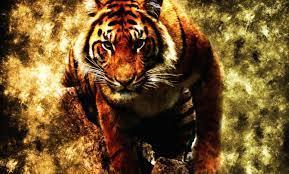 Abstract tiger Wallpaper HD Download