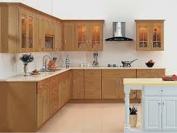 frosted glass kitchen cabinet doors luxury replacement kitchen cabinet doors with glass inserts best 78