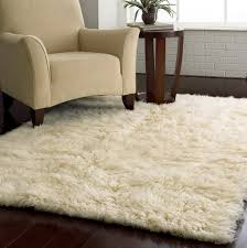 area rugs unthinkable round rug luxury floor a neat lowe runner
