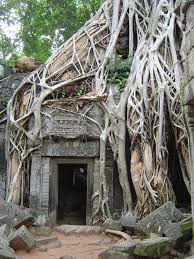 travels in the riel world blog archive photo essay temples an otherworldly scene at ta prohm temple one of many angkor ruins that have merged the jungle