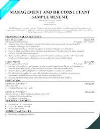 Sample Hr Professional Consultant Resume Senior Consultant Resume Travel Management Consulting