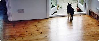 frequently asked questions floor sanding london sanding floors since 1995