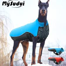 top 10 largest <b>winter</b> cloth for big <b>dogs</b> near me and get free shipping