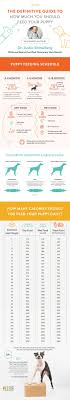 Puppy Eating Chart The Definitive Guide To How Much You Should Feed A Puppy