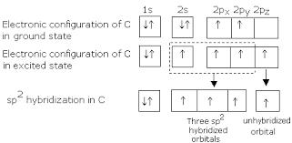 online alkenes chemistry assignment help alkenes homework help  img