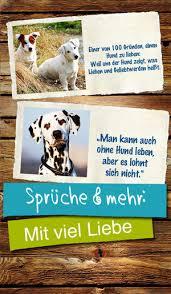 Hunde Grüße Sprüche Zitate über Den Hund Im App Store
