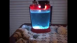 Sea Monkey Light Sea Monkeys 7 Days Old In Tank With Custom Light Youtube