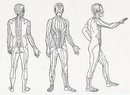 acupuncture meridians pathways of chi energy Meridian Lines Body Map Meridian Lines Body Map #23 meridian lines body map
