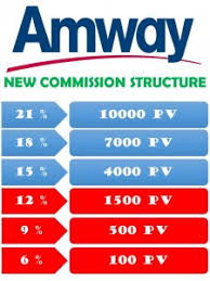 Amway Pin Level Income
