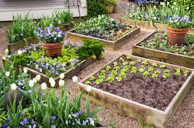 raised bed vegetable garden square