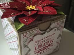 Ich Liebe Weihnachtssterne Als Pflanze Und Jetzt Auch Als