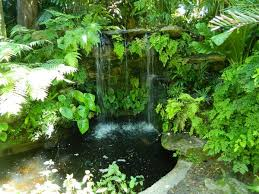 Small Picture Tropical Garden Design Ideas Your Staycation Oasis Easy To