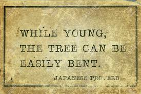 While Young, The Tree Can Be Easily Bent - Ancient Japanese Proverb.. Stock  Photo, Picture And Royalty Free Image. Image 59632411.