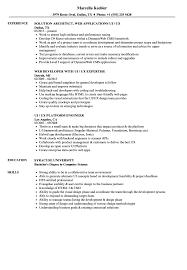 Resume Best Practices Ui Ux Resume Samples Velvet Jobs