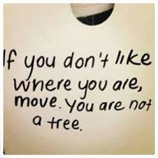 Quotes About Change In Life And Moving On Simple If You Don't Like Where You Are Move You're Not A Tree