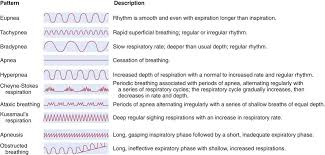 Types Of Breathing Patterns Respiratory System Disorders Basicmedical Key
