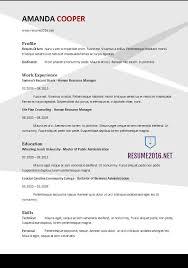 New Resume Format 2017 - Trenutno.info