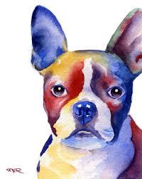 boston terrier dog art print signed by artist dj by k9artgallery watercolor