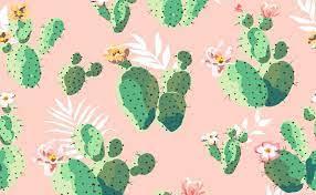 Cute Cactus Wallpaper - KoLPaPer ...