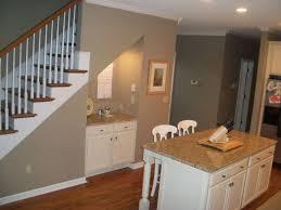 Painted Wood Kitchen Floors Kitchen Wonderful Kitchen Under Stair Design Ideas With Black